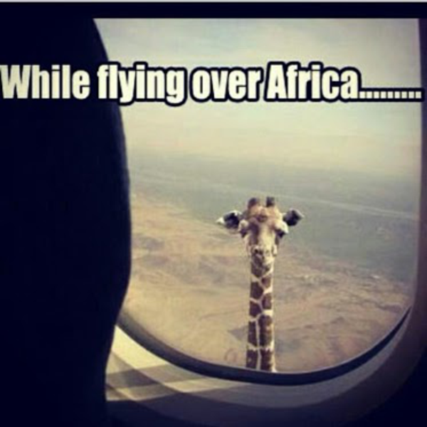 flying-over-africa