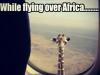 flying-over-africa