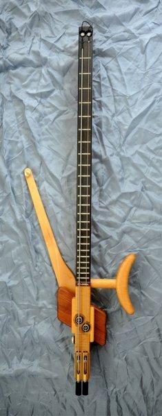 2string guitar