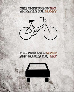 bicycle n car