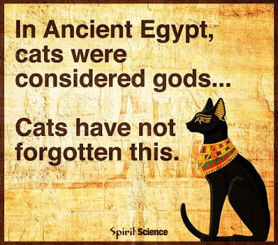 cats as gods
