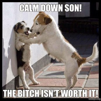dogs-Calm-down-son