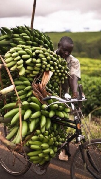 farmer n bike overloaded with banana