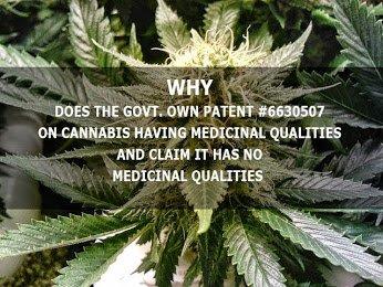 govt patent on marijuana