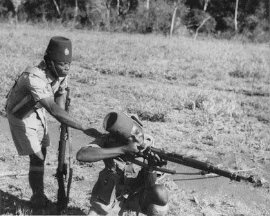 congolese in belgium colonial army