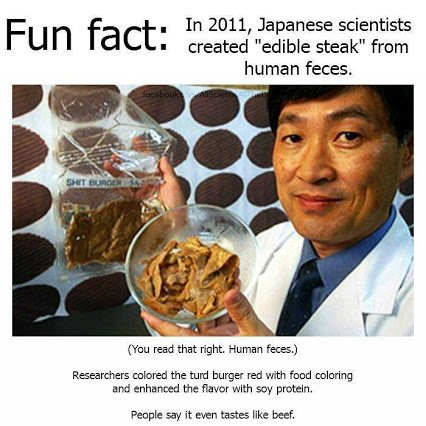 edible steak from human faeces