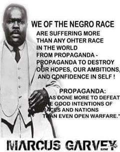 garvey on propaganda