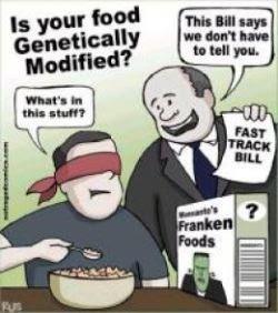 gm-food-bill