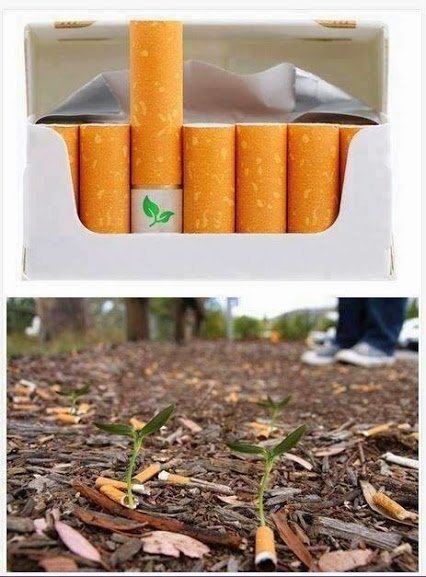 Biodegradable cigarette filters with flower seeds.