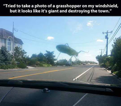 Giant Grasshopper Monster