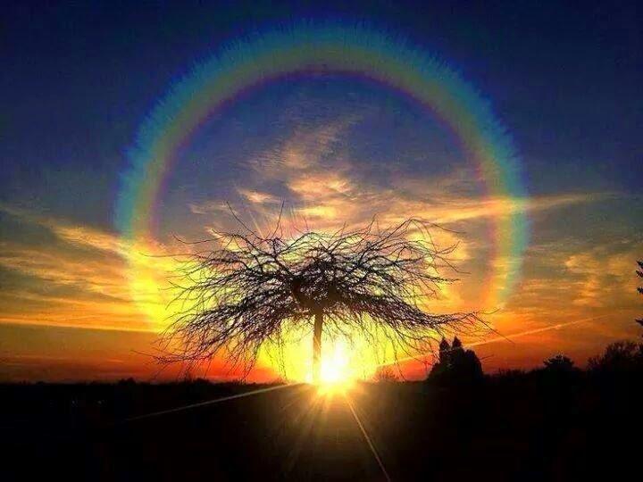 fantastic rainbow
