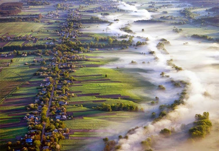 fog over fields, ukraine by volodymyr zinchenko