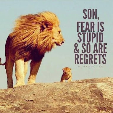 lion tells son fear is stupid