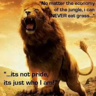 lion wont eat grass