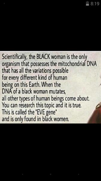 the even gene