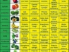 Health Benefits of Various Kind of Fruits and Vegetables