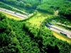 animal bridge in the netherlands