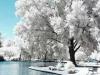beautiful iced poolside