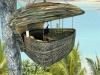 bird nest high up