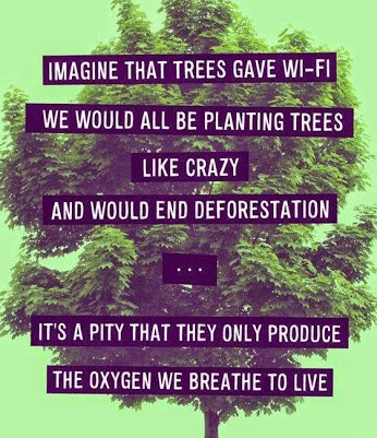 trees give only oxygen