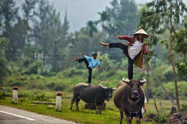 vietnamese-yoga-equilibrium
