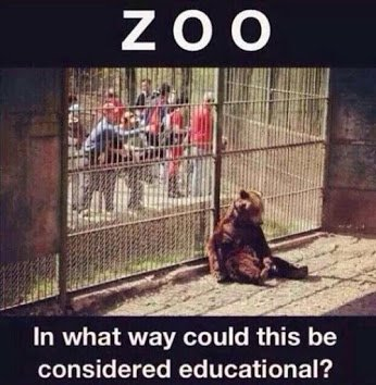 zoo and education