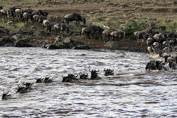 kenyan tourism