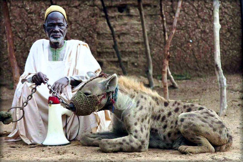 man and his pet