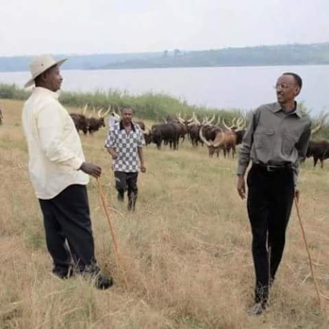 museveni and paul kagame