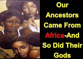 our ancestors came from africa