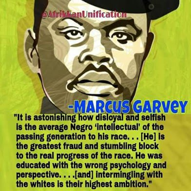 garvey on african intellectuals