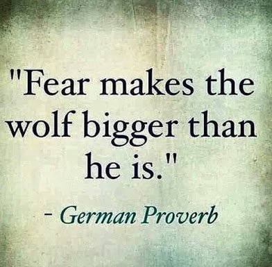 german proverb on wlf