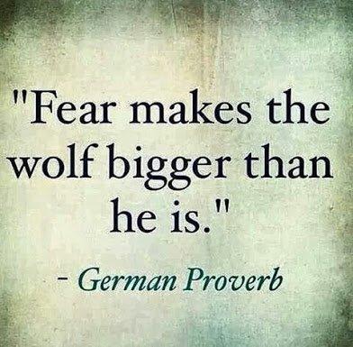 german proverb on wlf