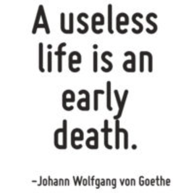 goethe on a useless life