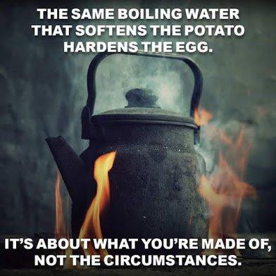 hard water boil egg and soften potato