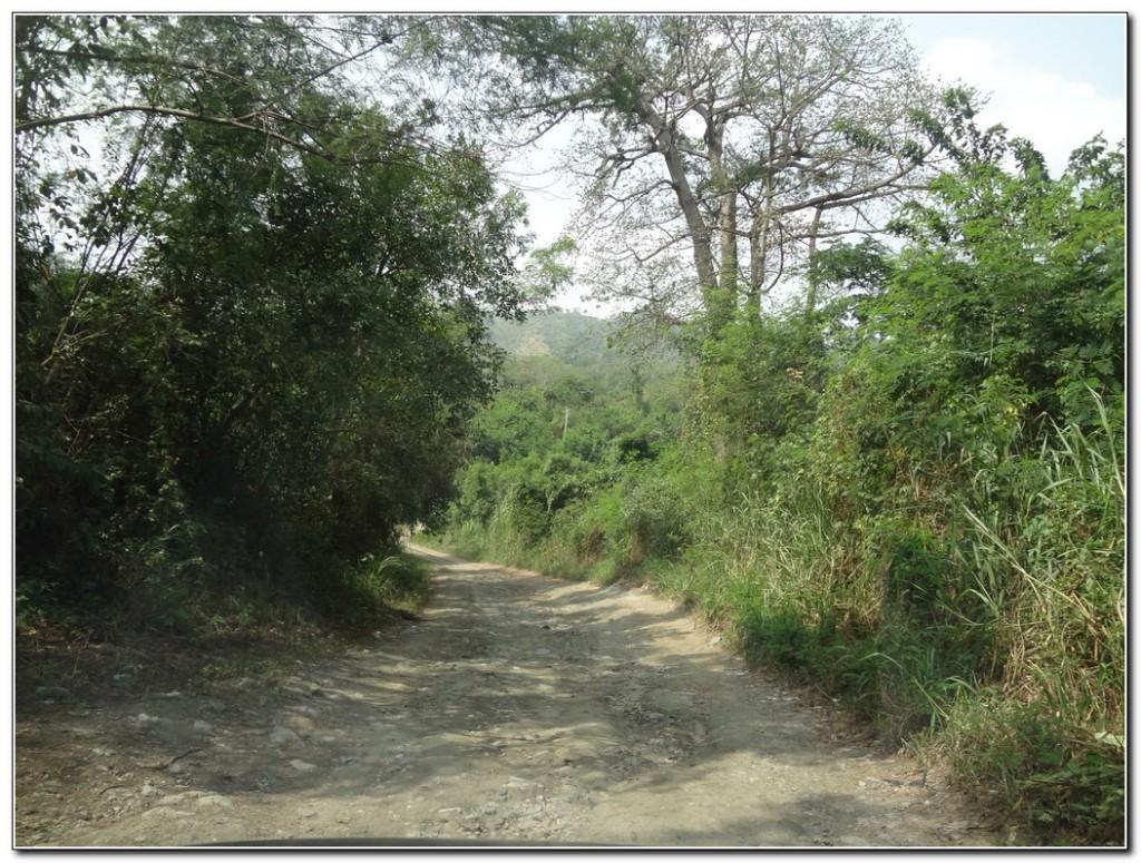 In and Around Lake Bosomtwe, Ashanti Region021