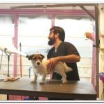 AlayeWebTV A visit to a Dog Salon in Amsterdam