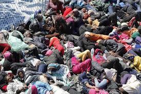 immigrants-disaster4.jpg?width=450