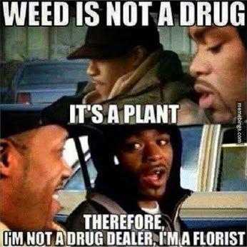 Funny weed-not-a-drug-dealer-im-a-florist-mb