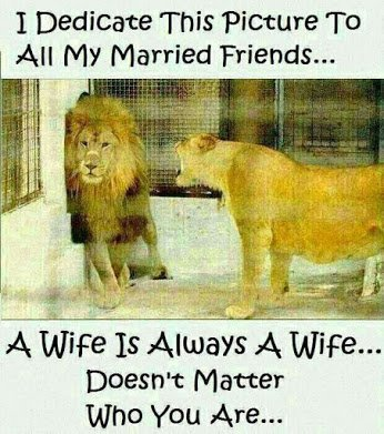 a wife is always a wife