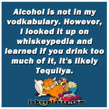 alcohol is not in my vodkabulary