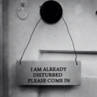 already disturbed come in