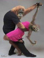 ape ballet