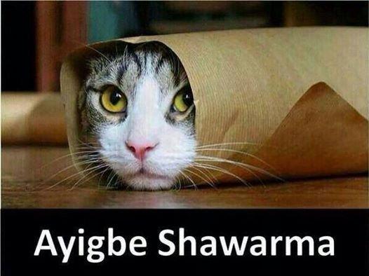 ayigbe shwarma