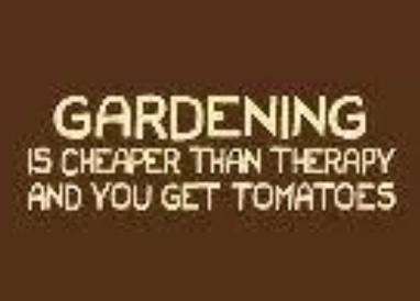 gardening is better than therapy