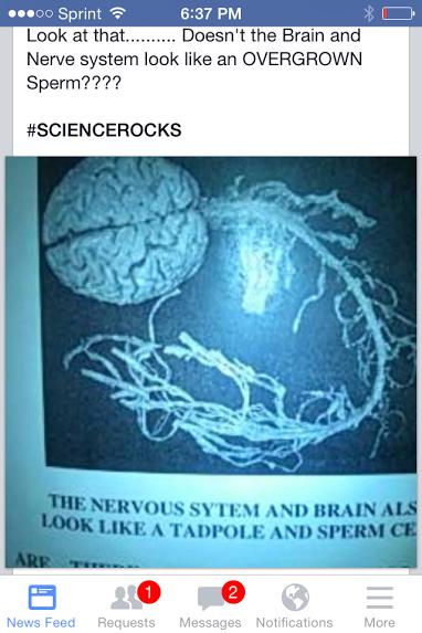 brain lok like prayer