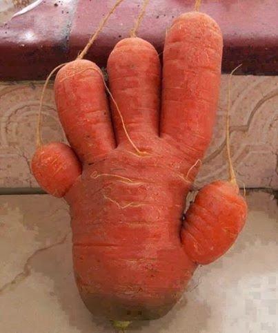 five fingered carrot