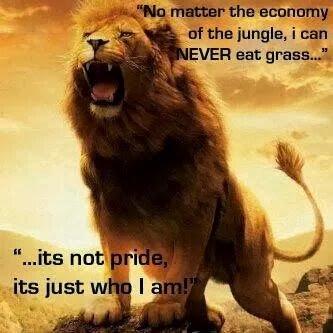 lion wont eat grass
