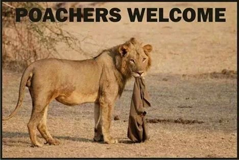 poachers welcome