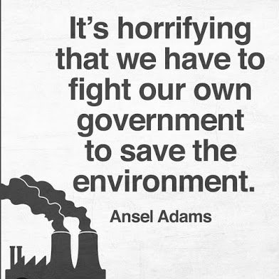 we have to fight govt to save the environment